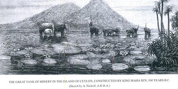 Elephant Gathering, 1876