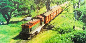 Train to Kandy, 1990